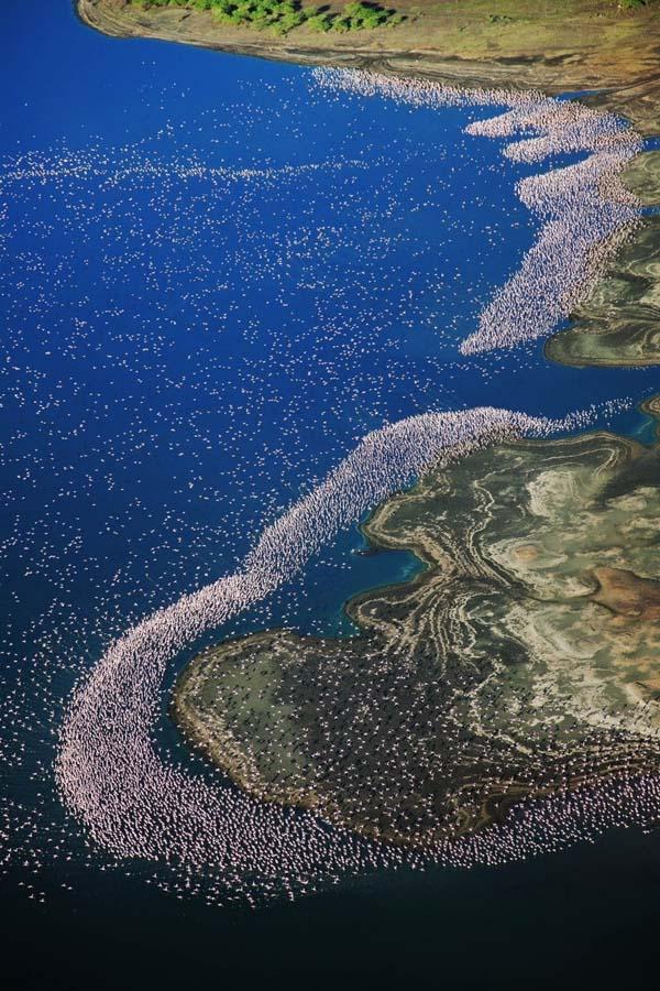 perierga.gr - Τι είναι αυτά τα λευκά στίγματα πάνω στη λίμνη;
