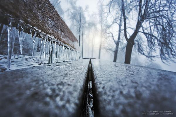 Perierga.gr-Μαγευτικές φωτογραφίες από τρένα μέσα σε χιονισμένα τοπία