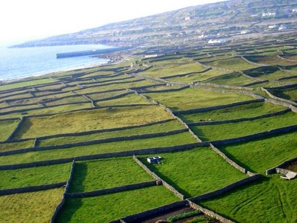 perierga.gr - Οι πέτρινοι τοίχοι της Ιρλανδίας