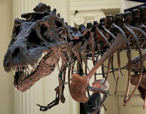perierga.gr - Ο τυραννόσαυρος «δάγκωνε με το βάρος τριών αυτοκινήτων»!
