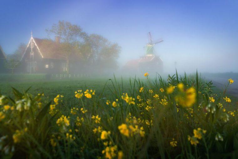 Perierga.gr - Οι ανεμόμυλοι της Ολλανδίας μέσα από την ομίχλη