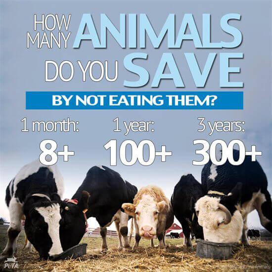 PETA-animals-salvation-saved-meat-veganism-vegetarianism