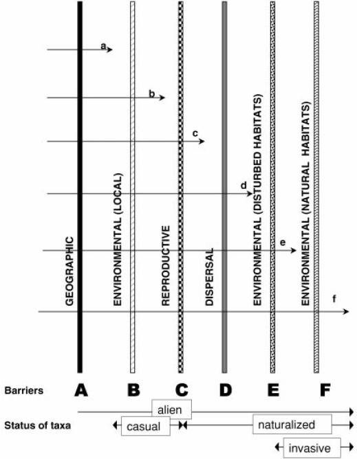 especies-exoticas-aloctonas-alien-invasoras-vias-introduccion-ecosistemas-barreras-geograficas-ambientales-bioticas-abioticas-autoctonas-nativas-regla-10