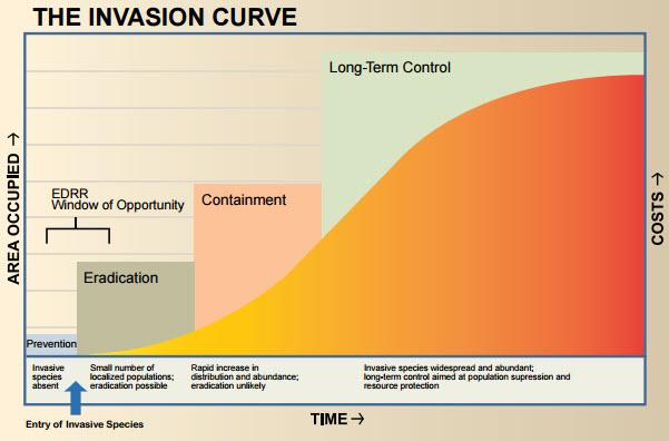 economic-impacts-prevention-population-control-biological-invasions-economy