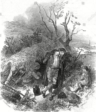 landowners-absenteeism-william-gregory-quarter-of-acre-great-irish-famine-ireland-potato-pytophtora-infestans-1845-plague-oomycete