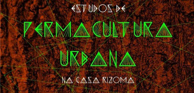 Da teoria à prática: Casa Rizoma faz grupo de estudos de permacultura urbana