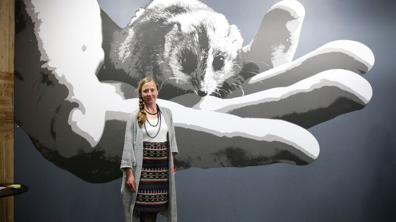 Mandy Schone-Salter's 'giant' hand holding a tiny possum