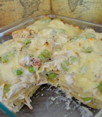 dish of alfredo chicken lasagna