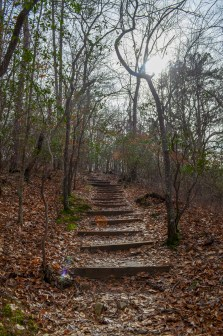 stairs along the path