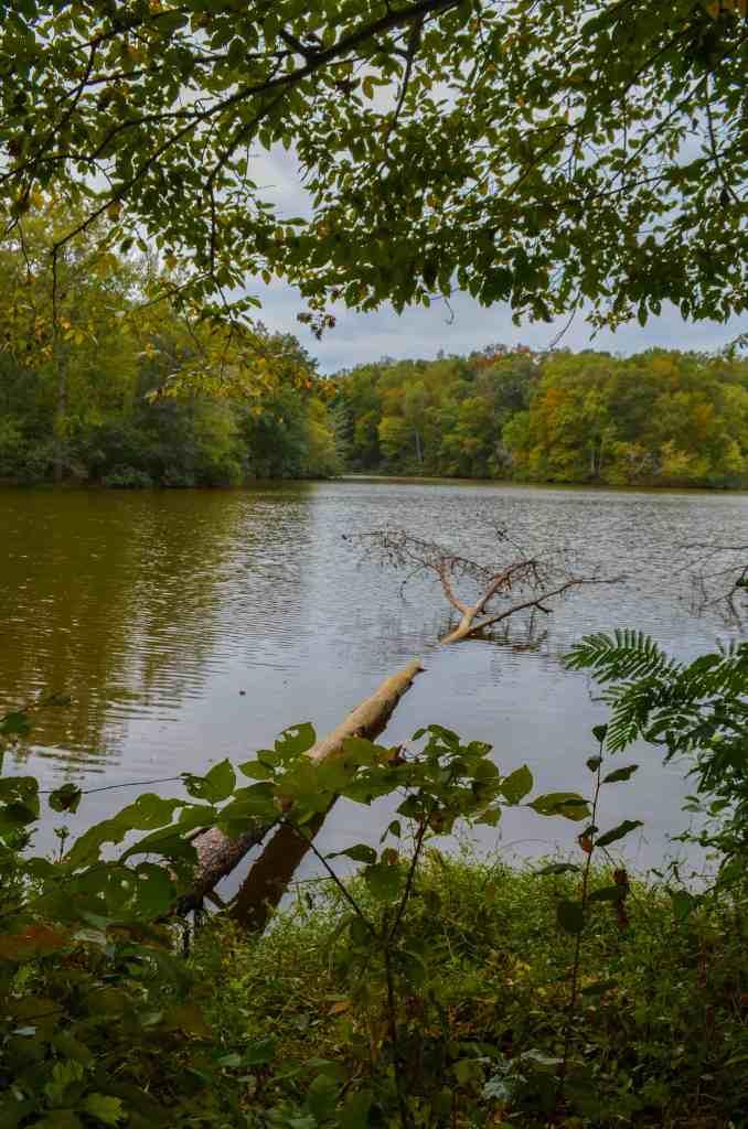 Bear Creek Lake State Park