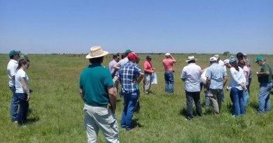 Se realizó en Tostado una jornada abierta a productores sobre pastoreo racional intensivo
