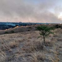 Cuidado!!! alerta gobierno sobre venta Irregular de Terrenos rumbo al Campus UAZ siglo XXI