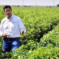"""""""Le entra"""" Guadalupe con 8 millones de pesos al sector Agropecuario"""