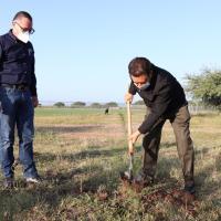 Autoridades hacen plantación de Árboles en Deportiva de La Quemada, Villanueva