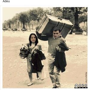Meme. Albert e Inés, ¿adiós a Ciudadanos?