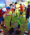 Jóvenes colaborando con el ambiente
