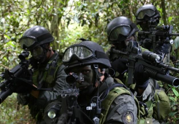 gaula policia nacional