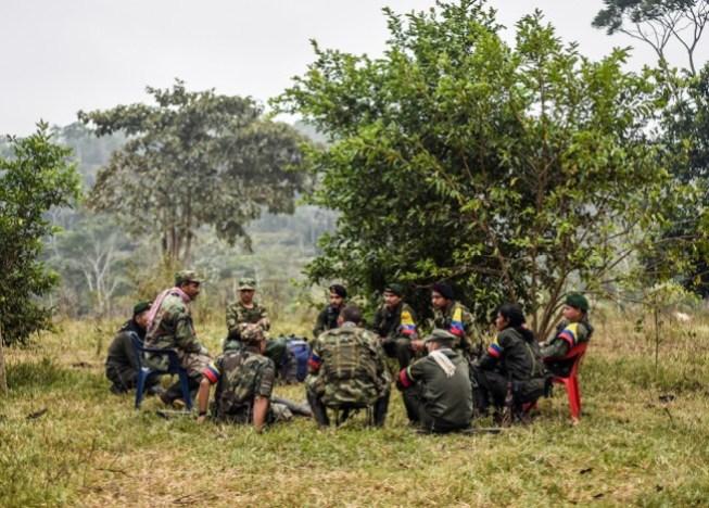 farc-campamento-guerrilla-afp