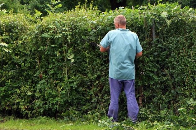 landscape-gardener-409148_960_720