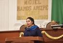 América Rangel busca generar ahorros económicos en materia de energía