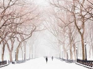 """""""Vórtice polar"""" llevará temperatura en partes de EEUU hasta 40 grados bajo cero"""