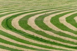 México y los círculos de las cosechas