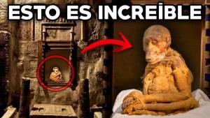 Descubren 70 millones de animales momificados en Egipto