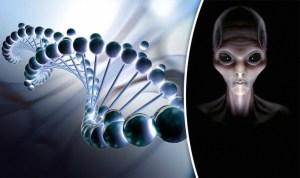 ¿Fueron los humanos diseñados por extraterrestres?