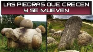 Los Trovants: Las piedras que crecen y se mueven
