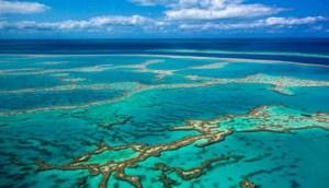 Científicos descubren ríos submarinos inusuales a lo largo de la costa de Australia