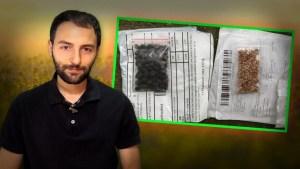 Misteriosas cajas con semillas están llegando a las casas de todo el mundo ¿Qué está pasando?