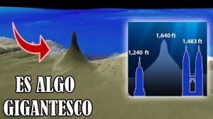 Descubren una colosal estructura viva en lo más profundo del océano