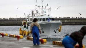 Detectan por primera vez en dos años un exceso de un elemento radioactivo en pescado cerca de Fukushima