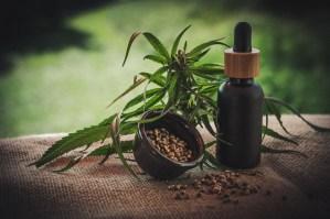 Los sorprendentes beneficios para la salud del aceite de cáñamo