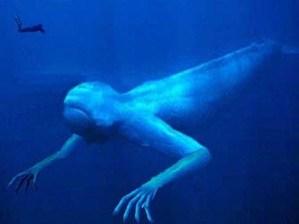 ¿Existen Monstruos Marinos en la Vida Real? – El Ningen