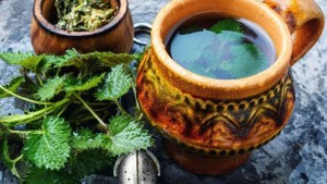 Té de ortiga: 10 razones para tomar una taza todos los días