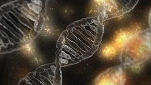 """La inmortalidad está oculta en el ser humano, el gen """"Matusalén"""""""