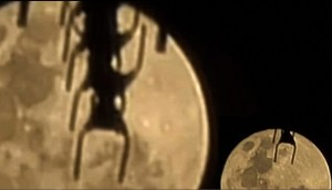 Mujer capta una 'criatura enorme arrastrándose en la luna' y asegura que no es una antena de TV