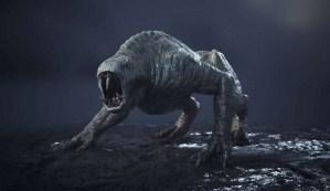 Científicos dicen que hay criaturas híbridas mutantes en la zona de exclusión de Fukushima