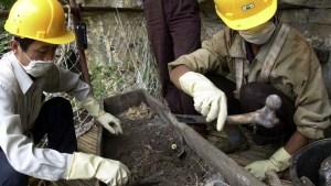 Arqueólogos descubren en China una fosa de más de 1.500 años de antigüedad con una pareja de amantes abrazados