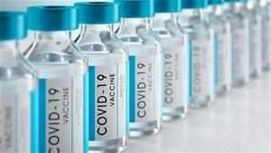 125 estudios y/o reportes científicos sobre los peligros asociados a las vacunas Covid-19