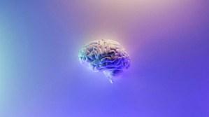 El consumo frecuente de estos alimentos puede destruir el cerebro