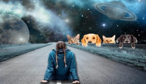 Psíquico de animales afirma que los gatos son 'interdimensionales' y ven cosas que los humanos no pueden