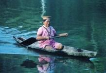 En los recorridos fluviales se observan de cerca monos, capibaras, tortugas, entre otras especies. Foto: Internet