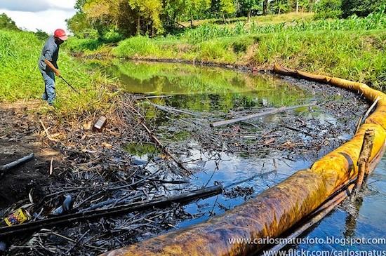 Contaminación por petróleo. Foto: Carlos Matus