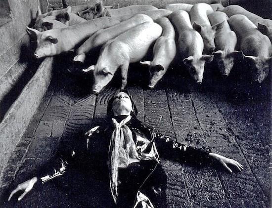 Romy en Metamorfosis de Jacinto Esteva, 1970