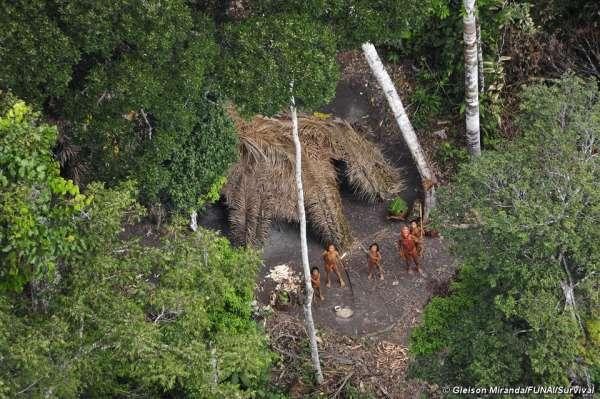 El grupo de indígenas aislados apareció en Brasil junto al borde fronterizo peruano, cerca de donde se sacó esta fotografía aérea en 2010. © G. Miranda/FUNAI/Survival