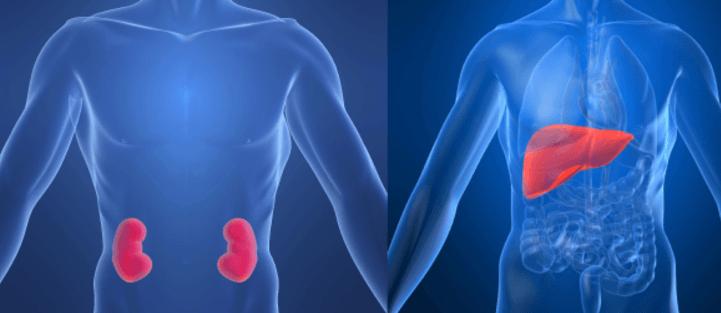 riesgos tomar metformina para adelgazar