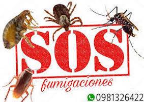 SOS fumigaciones Paraguay
