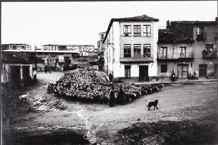 Ontañón Trashumancia 1963